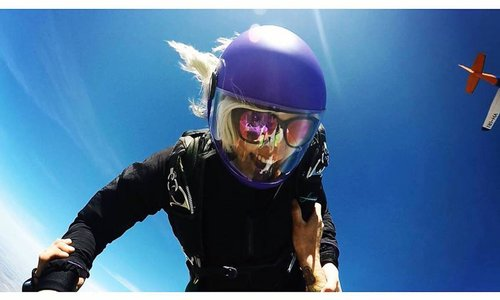 "Women in the sport at SA Skydiving - Cloe ""Danger Mc Cool Cat"" Castle"